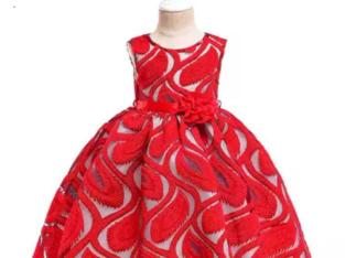 Beautiful Baby Girl Lace Dress